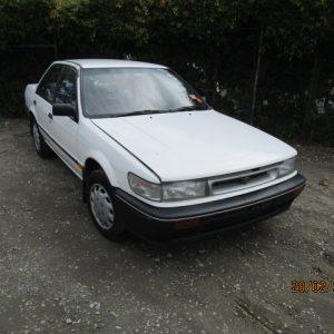 1995  Pintara